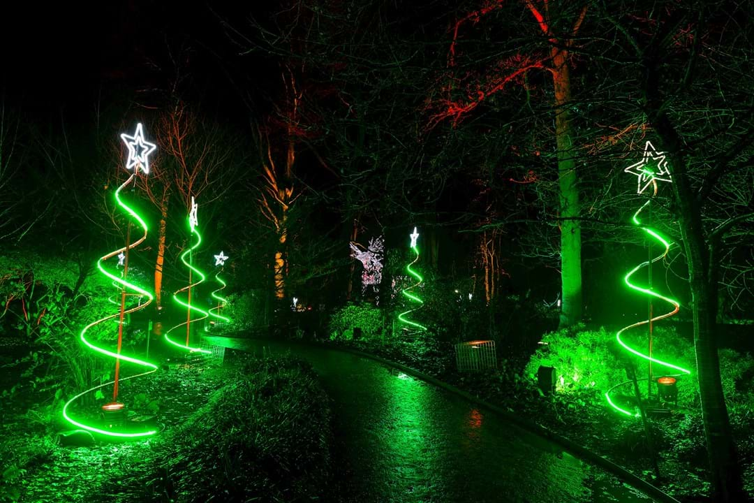 Christmas at the Botanic Garden in Edinburgh